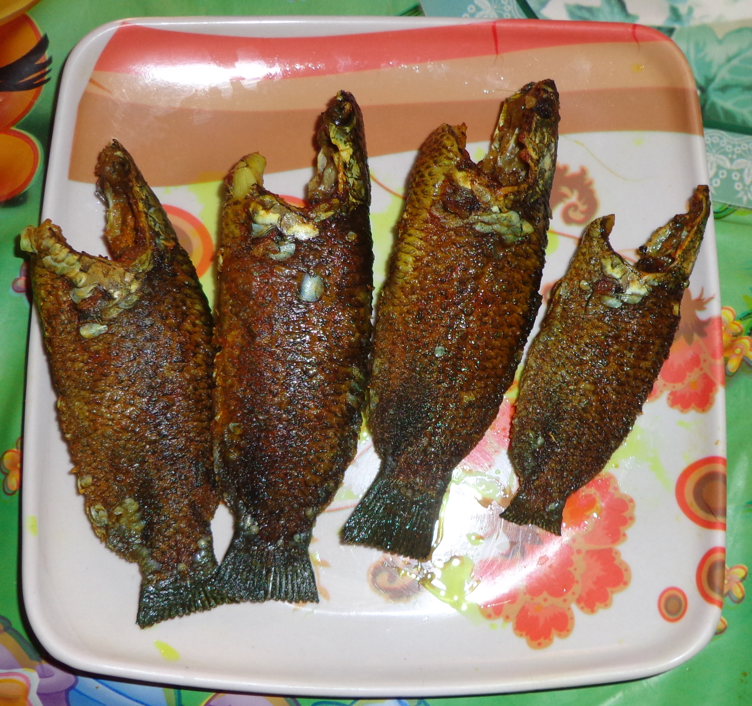 Tel koi tarnistha cook book for Koi carp fry